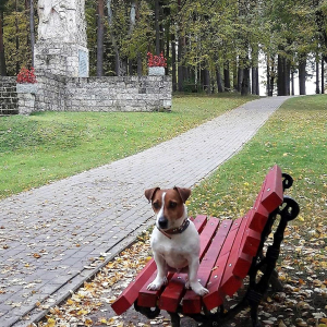 Arī mans suns mīl Latviju