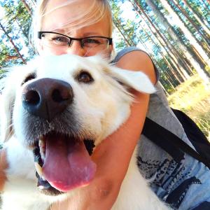 Selfijs ar suni