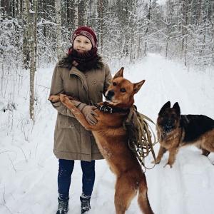 Suņa ziemas prieki